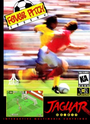 FEVER PITCH SOCCER image