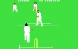 logo Emulators Graham Gooch's Test Cricket