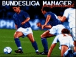 Логотип Emulators Bundesliga Manager Professional (1991)