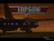 Logo Emulateurs Top Gun Fire at Will (1996)