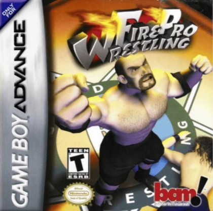 Fire Pro Wrestling [USA] image