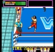 Логотип Emulators WWF SUPERSTARS [USA] (CLONE)