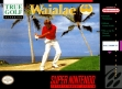 Logo Emulateurs New 3D Golf Simulation : Waialae no Kiseki [Japan]